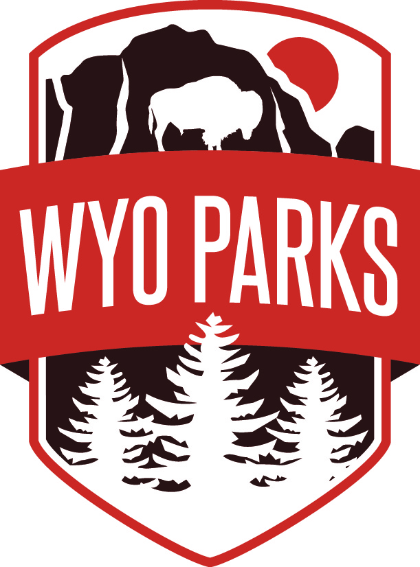 WSP Main Logo_CMYK (1)